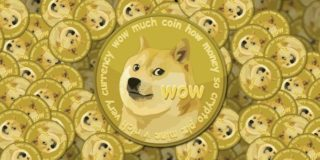 dogecoin interest by state
